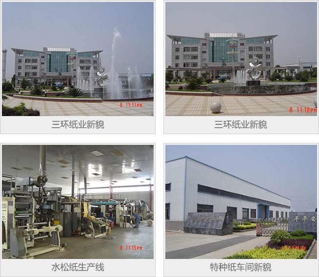 安徽省亚博体育客户端下载纸业集团有限公司